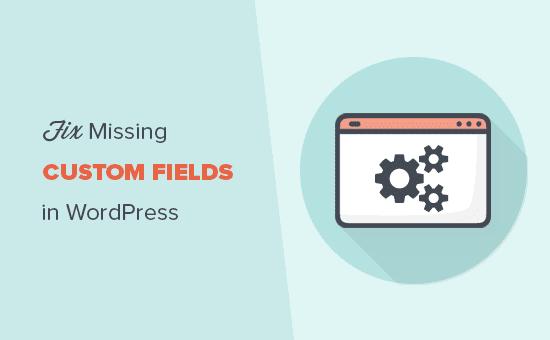 Fix missing custom fields in WordPress