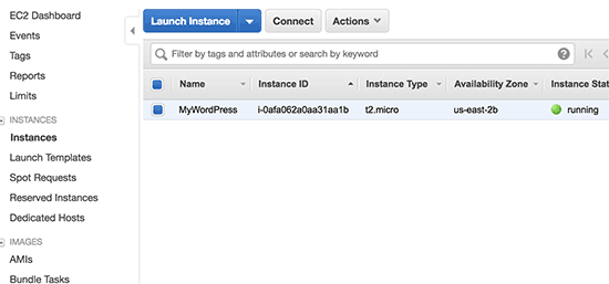 WordPress instance running